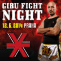 gibu fight night